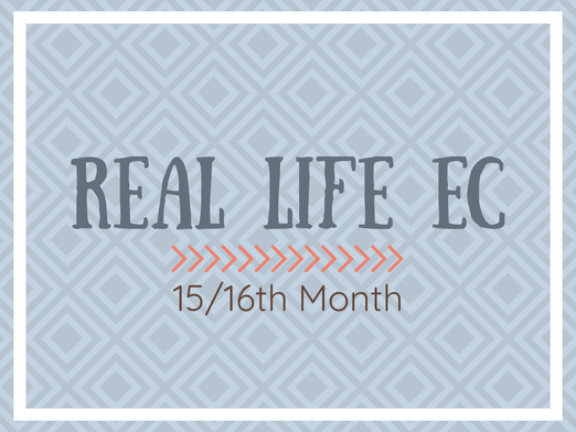 Real Life EC 15/16th Month